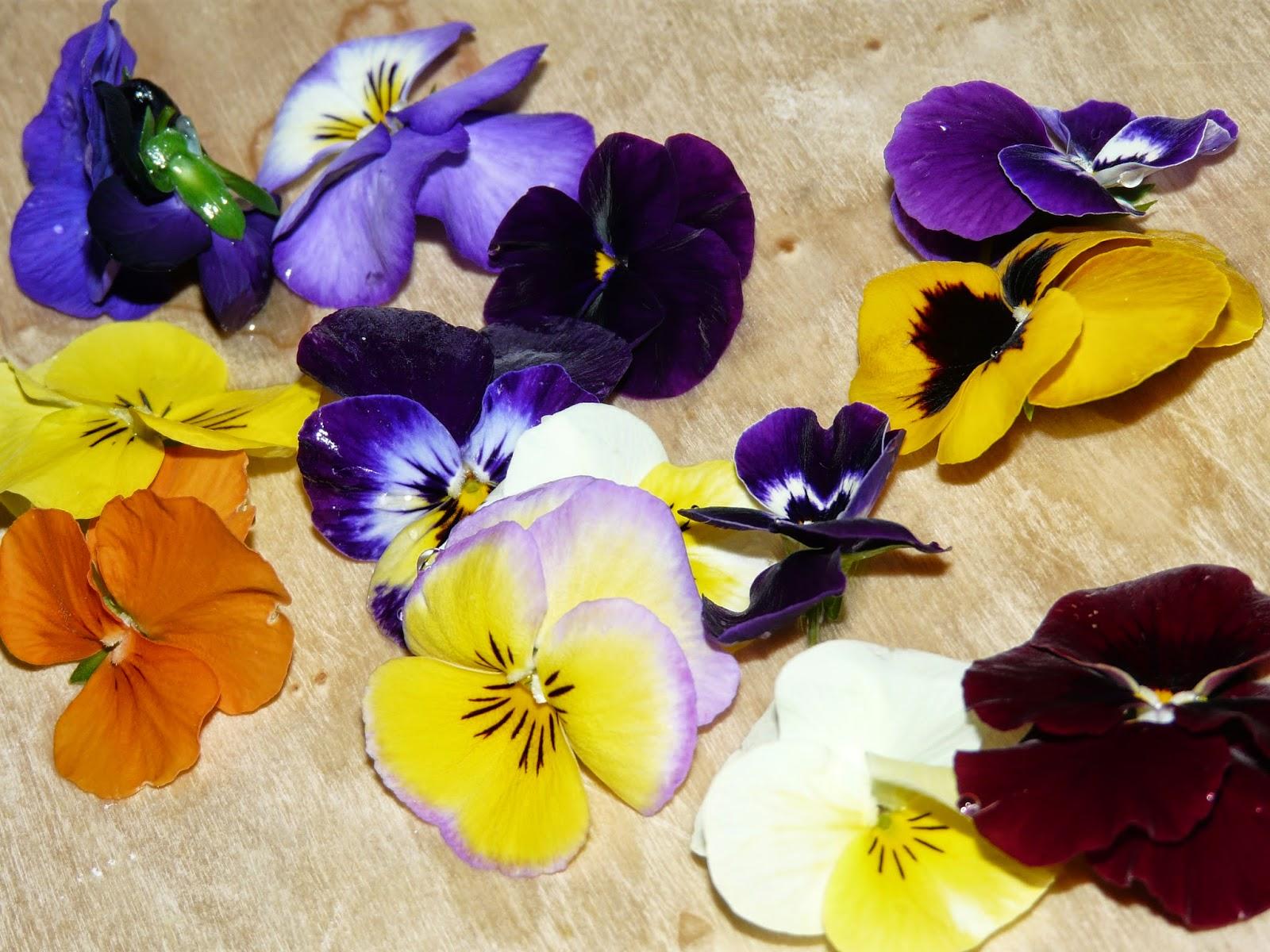 ravioli e fiori