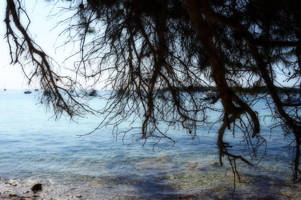 Isola-Santa-Margherita