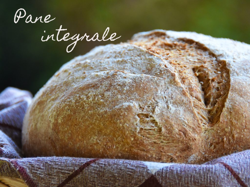 farina integrale pane