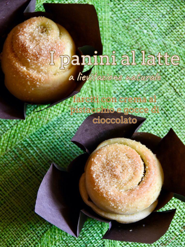 panini latte pistacchio cioccolato